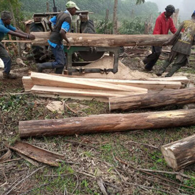 Men sawing logs for planks to use in building the kindergarten block