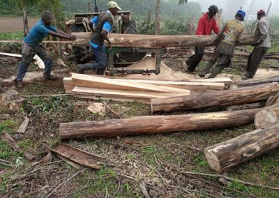 Logs being cut into planks for framing the kindergarten.